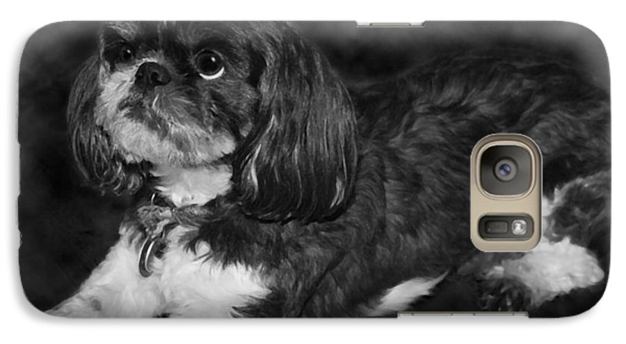 3scape Photos Galaxy S7 Case featuring the painting Shih Tzu by Adam Romanowicz