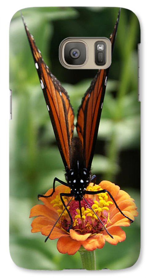 Butterflies Galaxy S7 Case featuring the painting Sip Sip Away by Debbie May