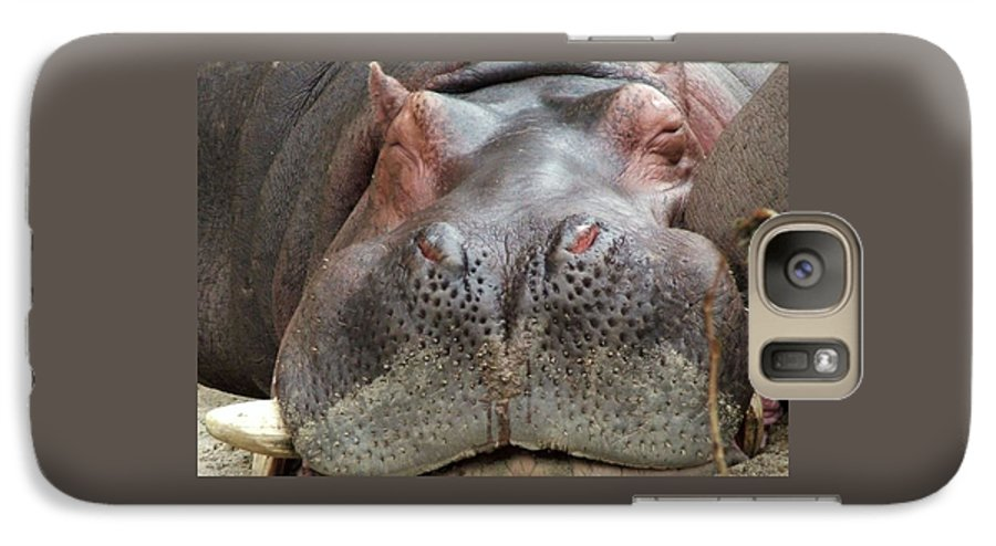 Hippopotamus Galaxy S7 Case featuring the photograph Sleeping Hippo by Tiffany Vest