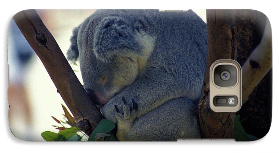 Sleep Galaxy S7 Case featuring the photograph Sleepy Koala Bear by Carl Purcell