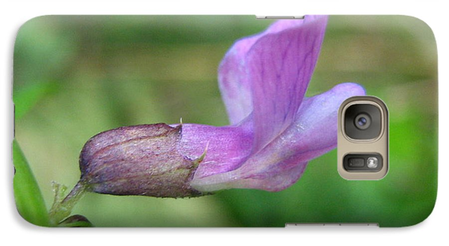 Flower Galaxy S7 Case featuring the photograph Small Purple Flower by Melissa Parks