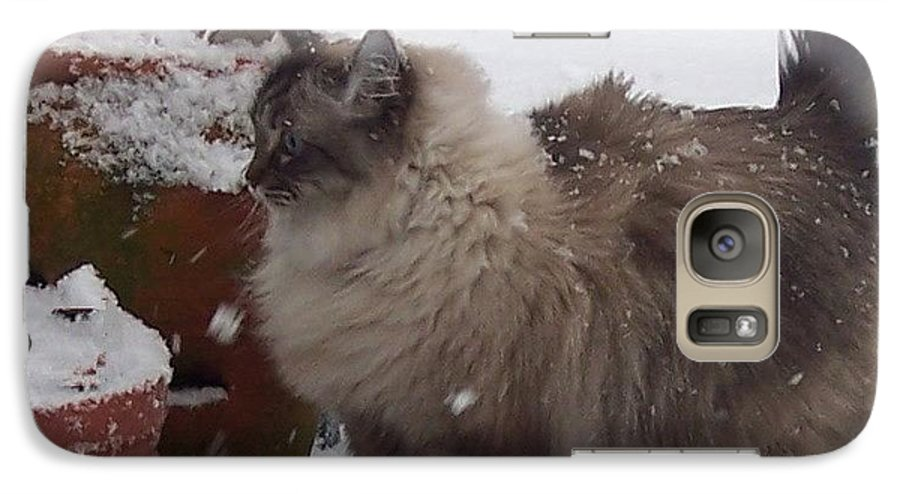 Cats Galaxy S7 Case featuring the photograph Snow Kitty by Debbi Granruth