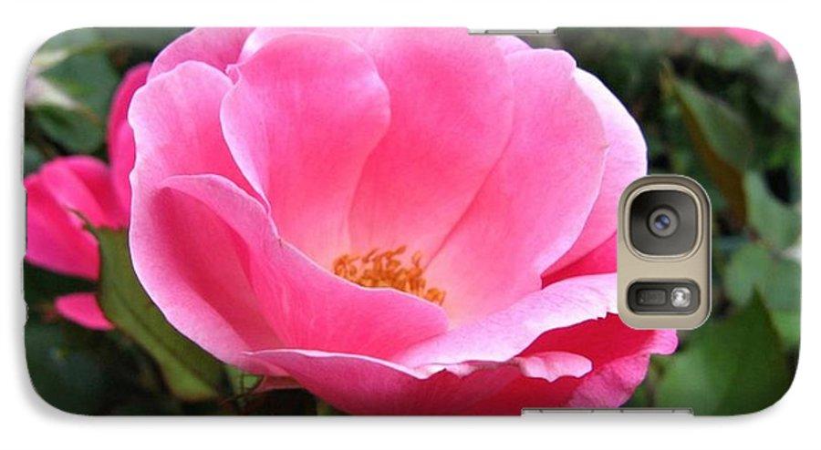 Flower Galaxy S7 Case featuring the photograph So Pretty by Rhonda Barrett
