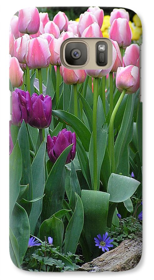 Tulips Galaxy S7 Case featuring the photograph Spring Colors by Louise Magno