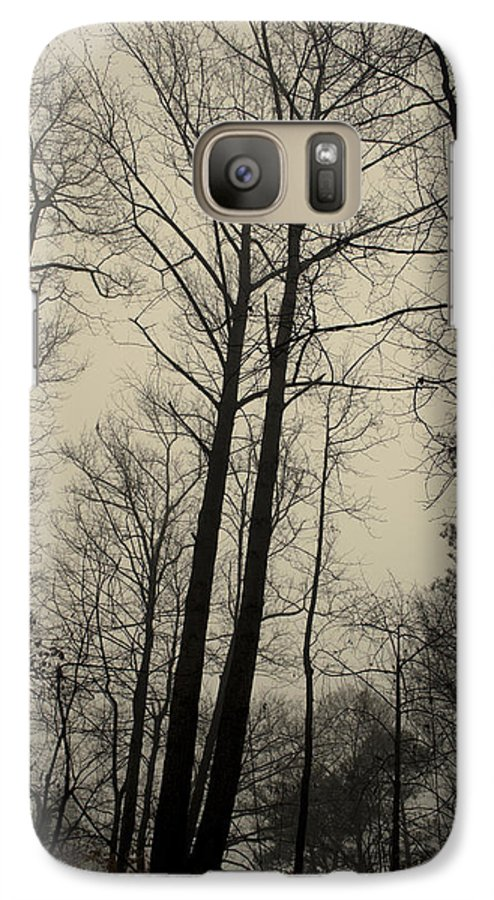 Trees Galaxy S7 Case featuring the photograph Standing Tall by Ayesha Lakes