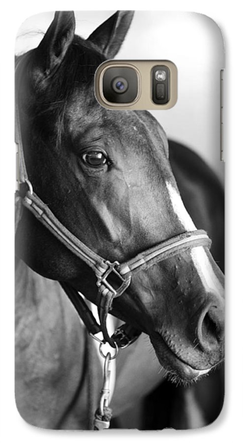 Horse Galaxy S7 Case featuring the photograph Horse And Stillness by Marilyn Hunt