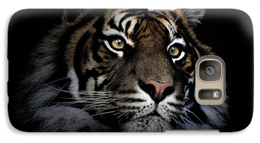 Sumatran Tiger Wildlife Endangered Galaxy S7 Case featuring the photograph Sumatran Tiger by Avalon Fine Art Photography