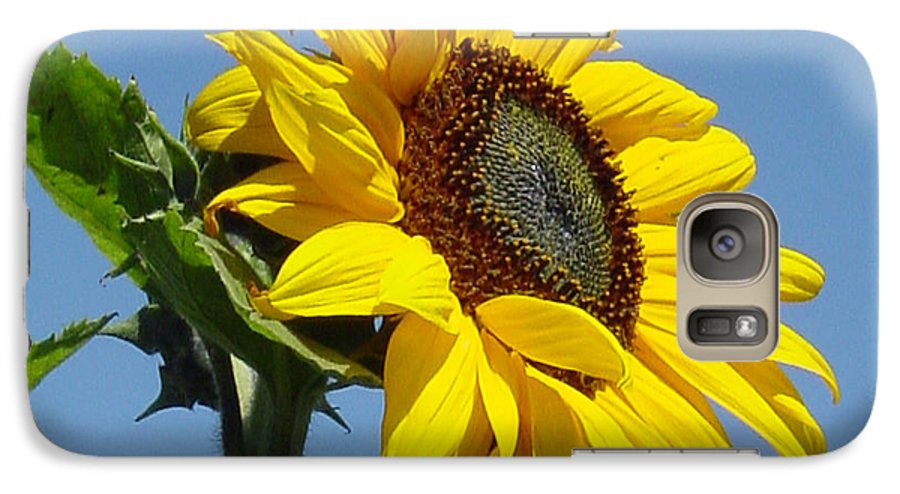 Sunflower Galaxy S7 Case featuring the photograph Sun Goddess by Suzanne Gaff