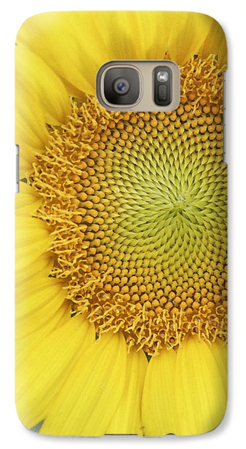 Sunflower Galaxy S7 Case featuring the photograph Sunflower by Margie Wildblood