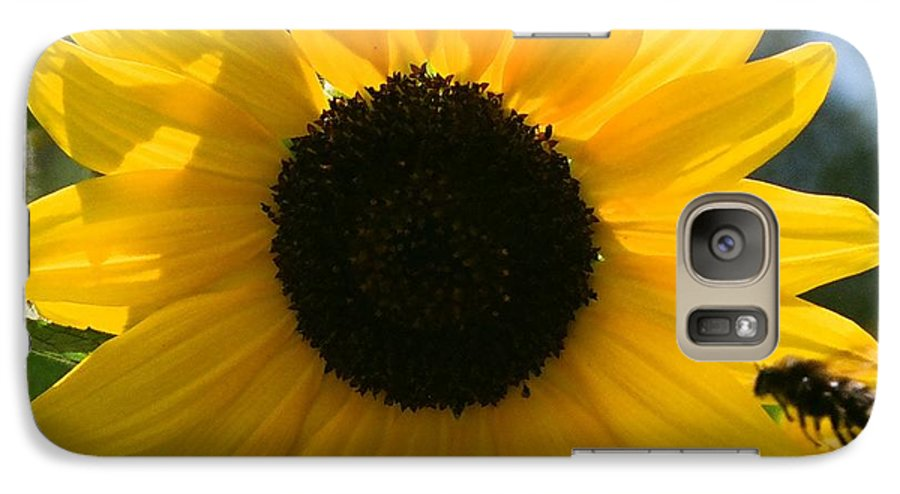 Flower Galaxy S7 Case featuring the photograph Sunflower With Bee by Dean Triolo