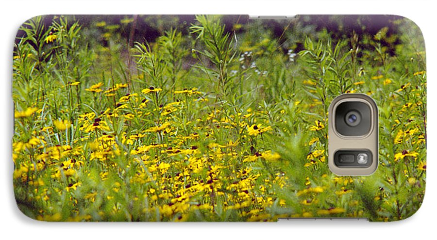 Nature Galaxy S7 Case featuring the photograph Susans In A Green Field by Randy Oberg