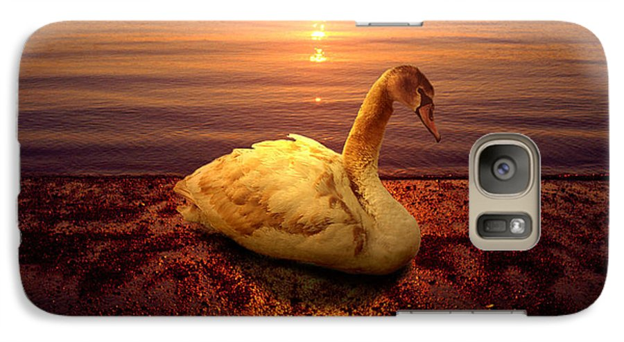 Animal Galaxy S7 Case featuring the photograph Swan Lake by Yuri Lev