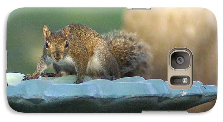 Squirrel Galaxy S7 Case featuring the painting Testing The Waters by Debbie May