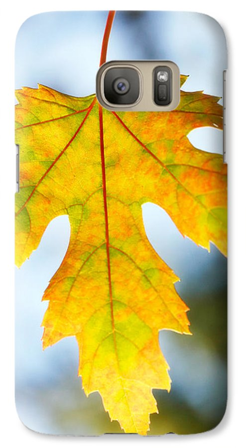 Maple Galaxy S7 Case featuring the photograph The Maple Leaf by Marilyn Hunt