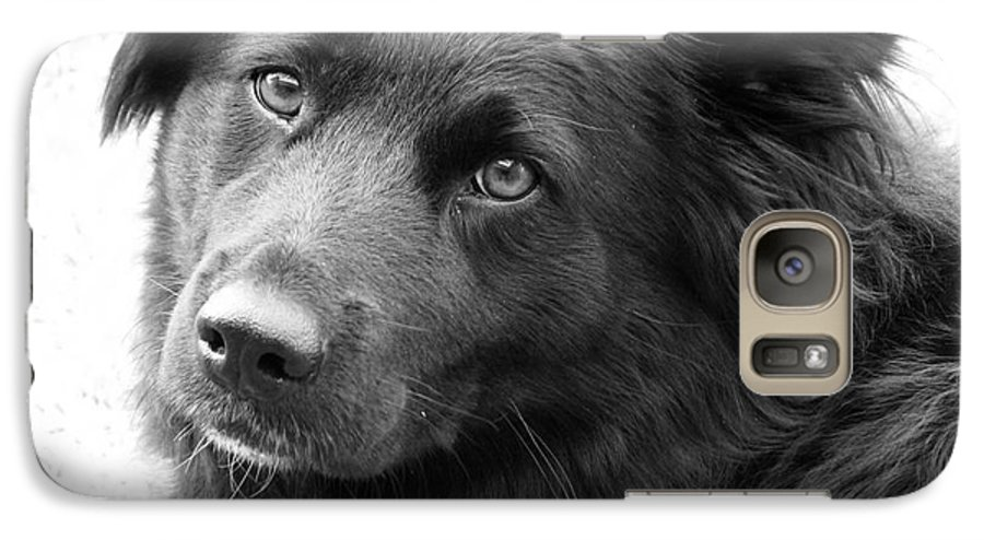 Dog Galaxy S7 Case featuring the photograph Thinking by Amanda Barcon