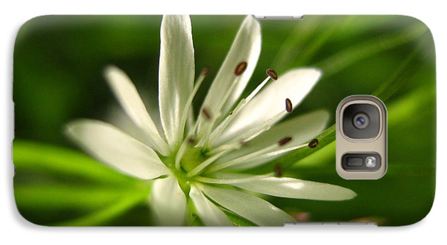 Tiny White Flower Galaxy S7 Case featuring the photograph Tiny White Flower by Melissa Parks