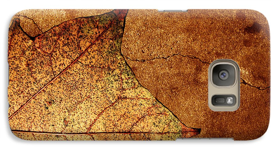 Autumn Galaxy S7 Case featuring the photograph Today Everything Changes by Dana DiPasquale