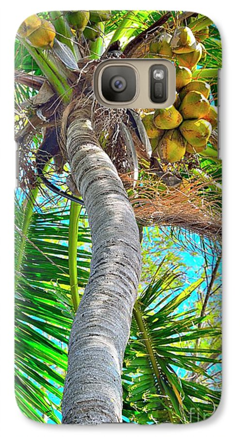 Coconut Palm Tree Galaxy S7 Case featuring the photograph Trunk Show by Alison Belsan Horton
