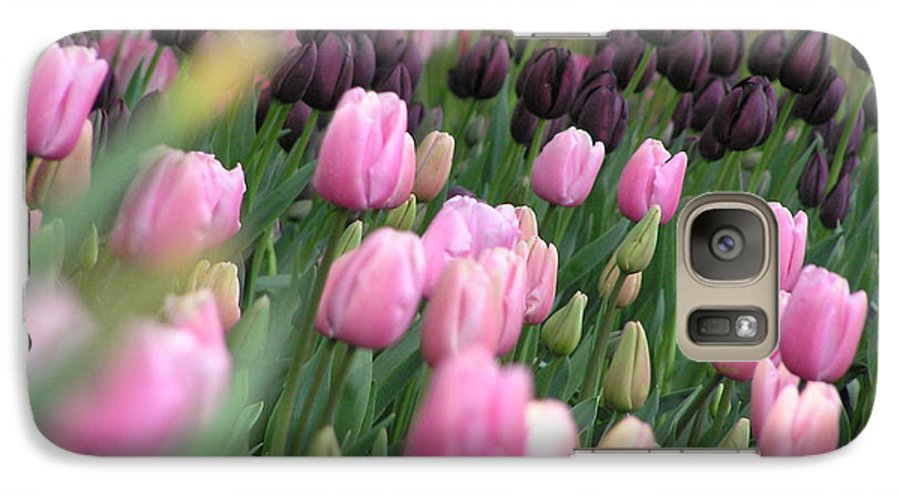 Tulips Galaxy S7 Case featuring the photograph Tulip Dreams by Louise Magno