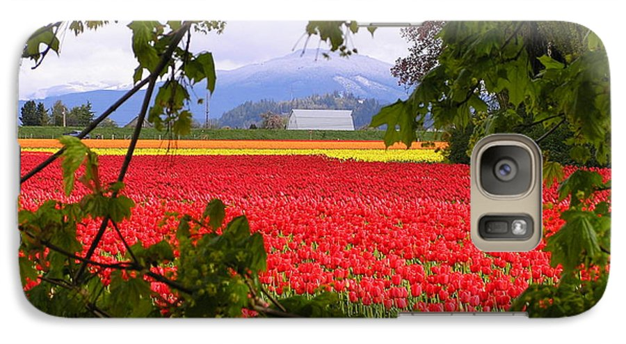 Tulip Galaxy S7 Case featuring the photograph Tulips Secret Window by Louise Magno