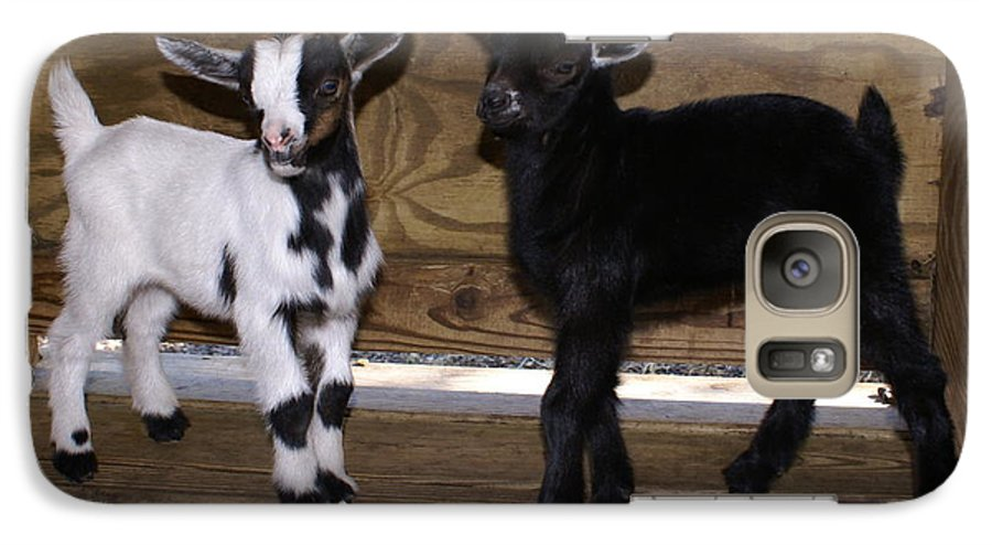 Baby Goat Twins Galaxy S7 Case featuring the photograph Twin Kids by Debbie May