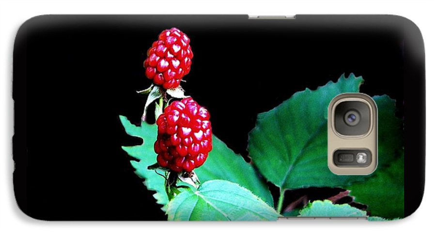Black Berries Galaxy S7 Case featuring the digital art Unripe Blackberries by Kenna Westerman