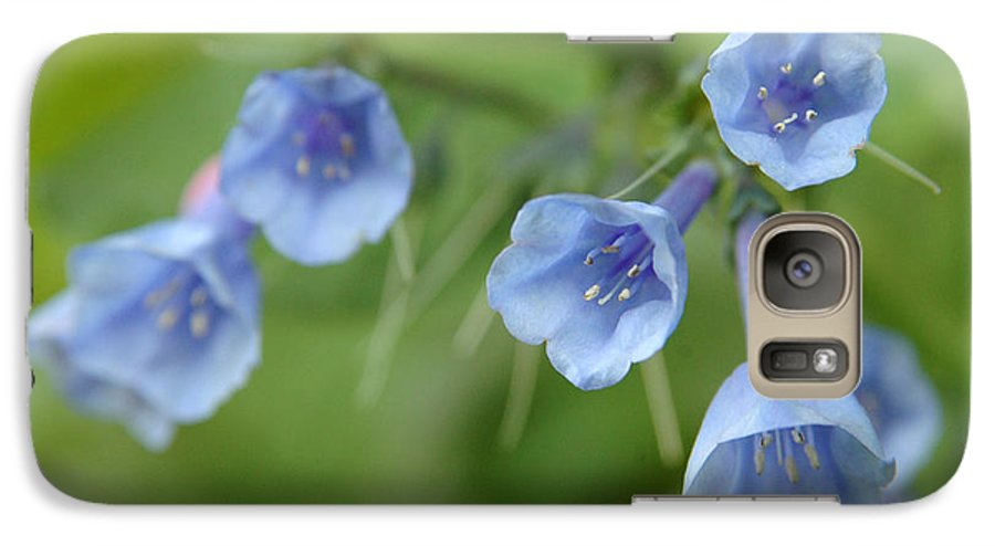 Bluebells Galaxy S7 Case featuring the photograph Virginia Bluebells I by Kathy Schumann