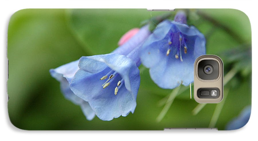 Bluebells Galaxy S7 Case featuring the photograph Virginia Bluebells II by Kathy Schumann
