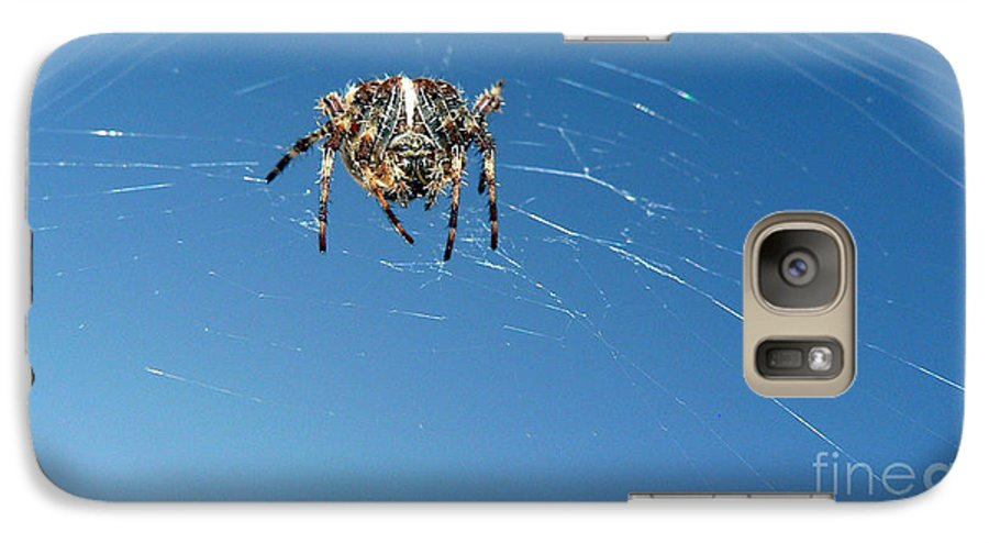 Spider Galaxy S7 Case featuring the photograph Waiting by Larry Keahey