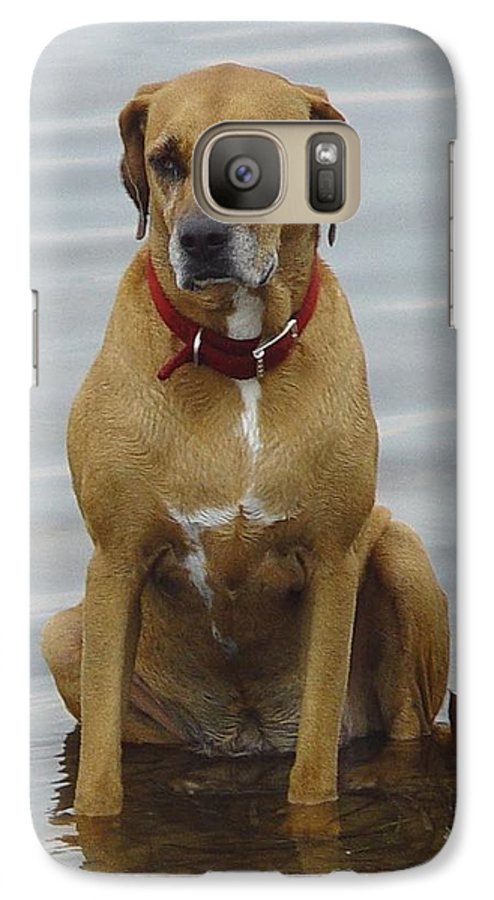 Dog Galaxy S7 Case featuring the photograph Where's The Pillow by Debbie May
