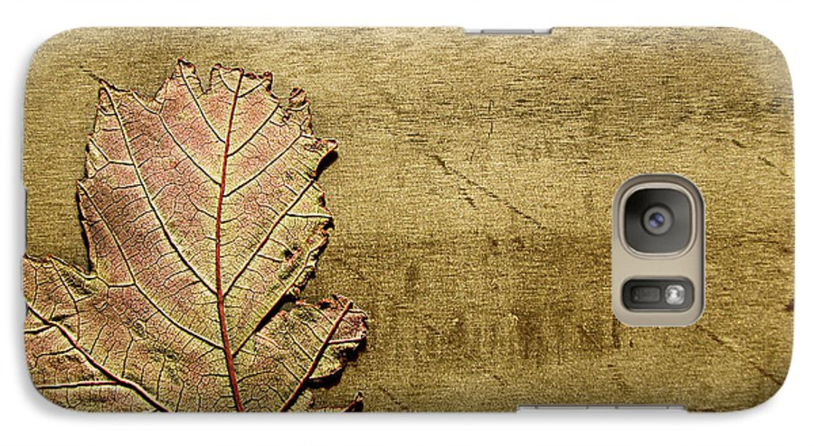 Autumn Galaxy S7 Case featuring the photograph ...while You Fall Apart by Dana DiPasquale