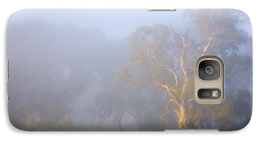Tree Galaxy S7 Case featuring the photograph White Gum Morning by Mike Dawson