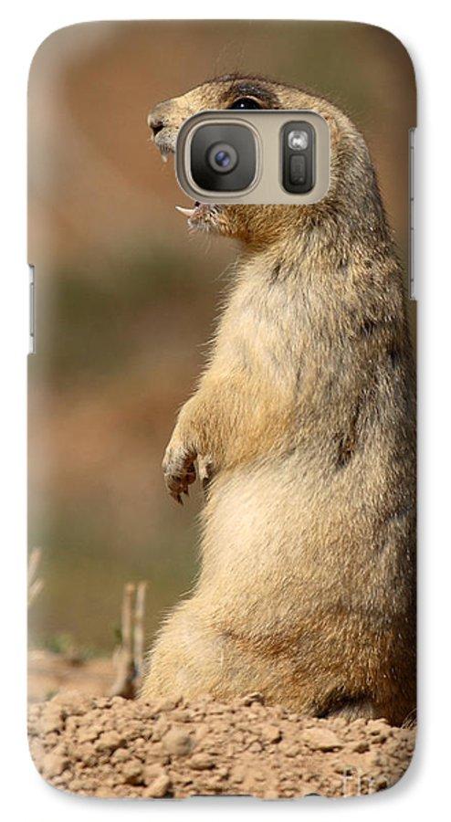 Prairie Dog Galaxy S7 Case featuring the photograph White-tailed Prairie Dog Giving A Fierce Bark by Max Allen