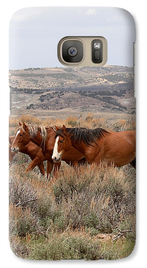 Horse Galaxy S7 Case featuring the photograph Wild Horse Trio by Max Allen