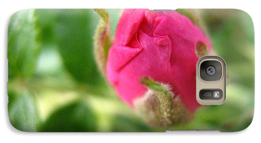 Rose Galaxy S7 Case featuring the photograph Wild Rose Bud by Melissa Parks