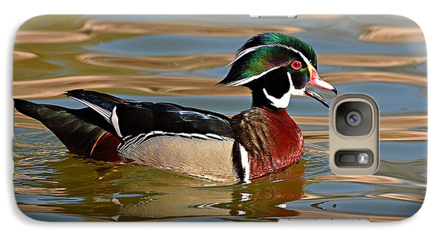 Wood Duck Galaxy S7 Case featuring the photograph Wood Duck Drake Calling On The Pond by Max Allen