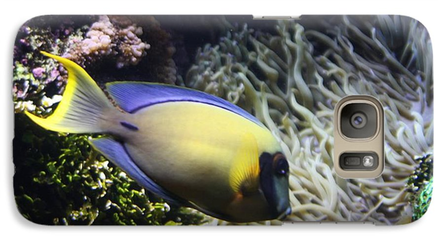 Fish Galaxy S7 Case featuring the photograph Yellow Fish by Kenna Westerman
