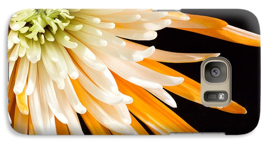 Flower Galaxy S7 Case featuring the photograph Yellow Flower On Black by Al Mueller