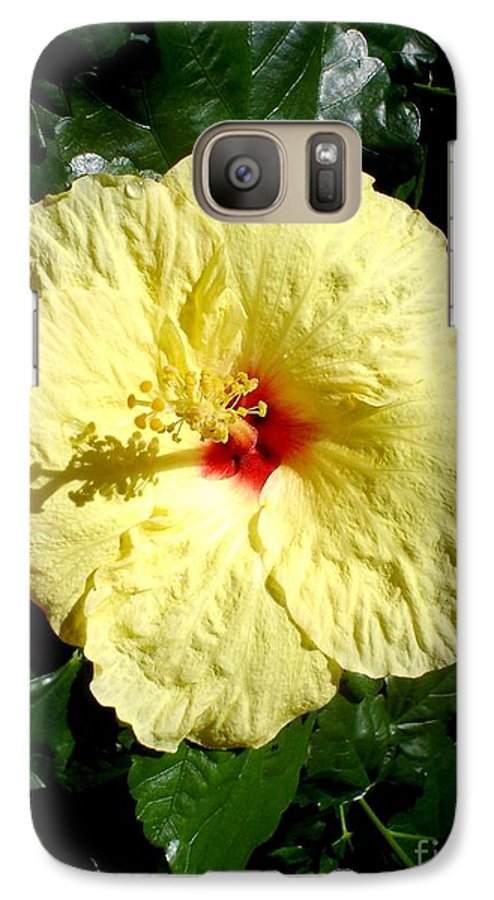 Flower Galaxy S7 Case featuring the photograph Yellow Hibiscus The Hawaiian State Flower by Chandelle Hazen