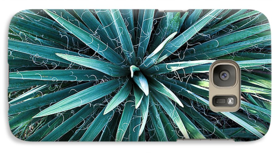 Yucca Galaxy S7 Case featuring the photograph Yucca Plant Detail by Douglas Barnett