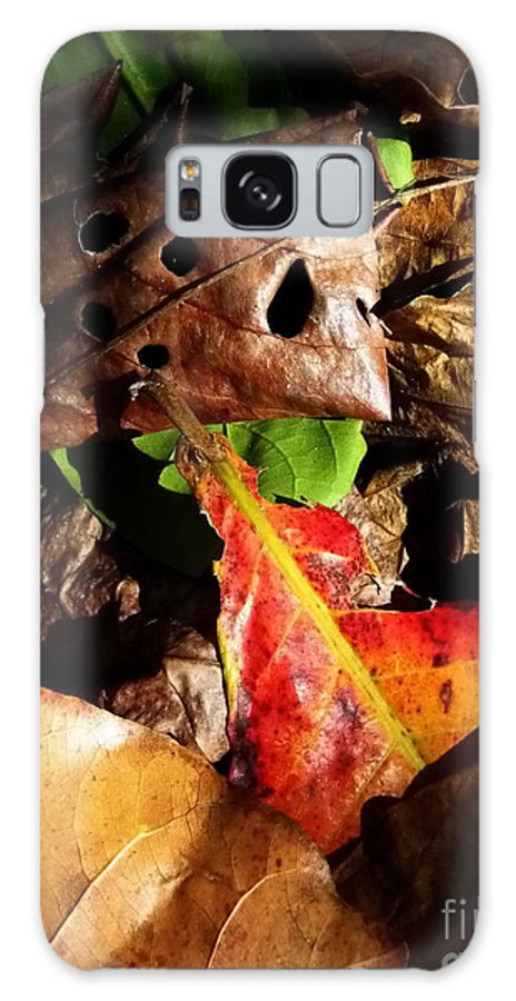 Michelle Meenawong Galaxy S8 Case featuring the photograph Colored Leaves by Michelle Meenawong
