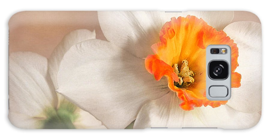 Flower Galaxy S8 Case featuring the photograph Daffodil by David and Carol Kelly