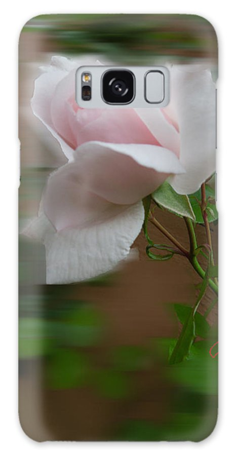 Collette Galaxy S8 Case featuring the photograph July Rose Thought by Colette V Hera Guggenheim