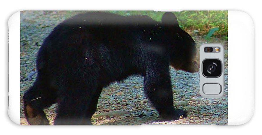 Bear Galaxy S8 Case featuring the photograph One Of Two Cubs by Debora Morrison Short
