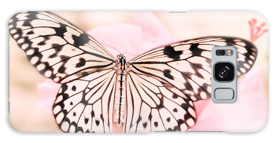 Butterfly Galaxy S8 Case featuring the photograph Paper Kite by David and Carol Kelly