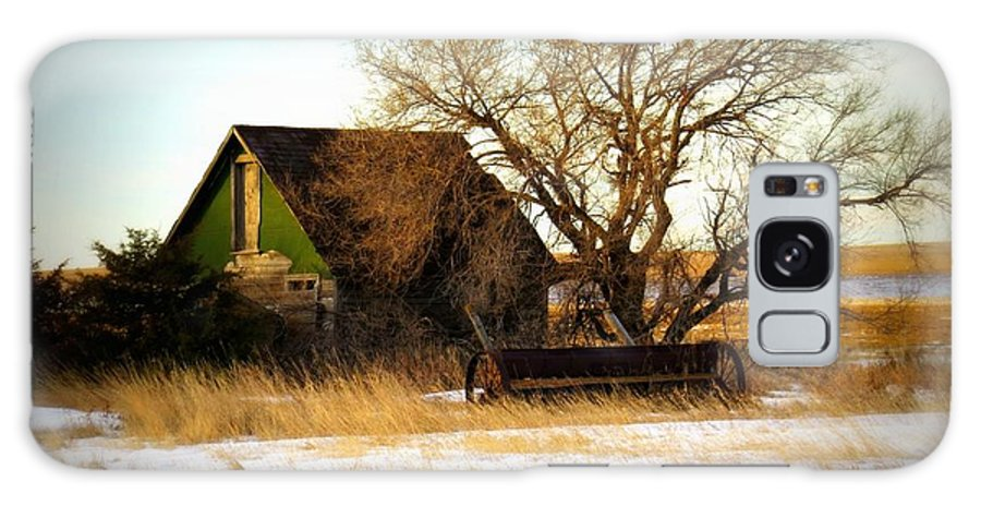 Old House Galaxy S8 Case featuring the photograph  Vintage Green House by Mary Willrodt