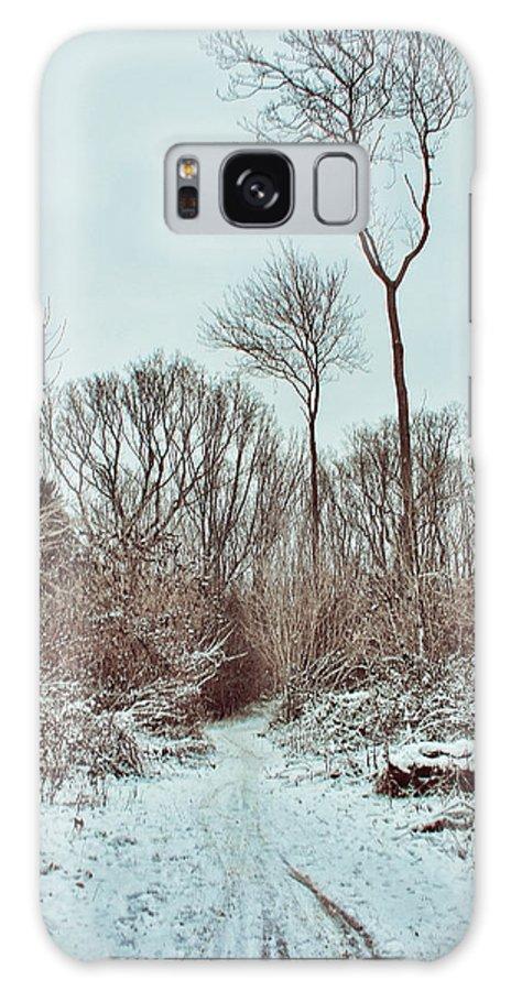 Woodland Walk Galaxy S8 Case featuring the photograph Woodland Walk by Dave Godden