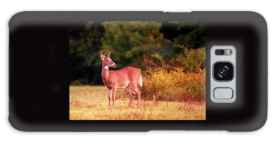 Deer Galaxy Case featuring the photograph 070406-58 by Mike Davis