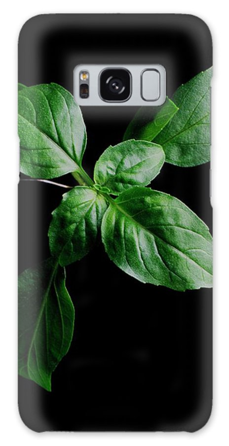 Herbs Galaxy S8 Case featuring the photograph A Sprig Of Basil by Romulo Yanes