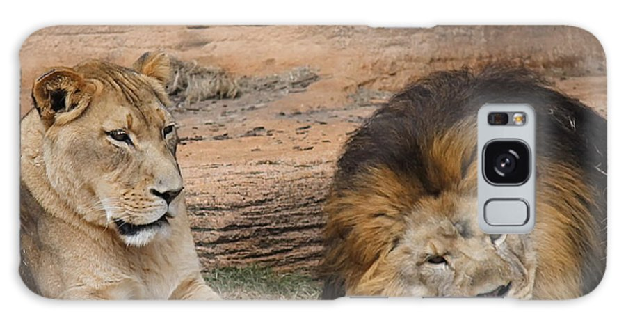 Lion Galaxy S8 Case featuring the photograph African Lion Couple 3 by Cathy Lindsey